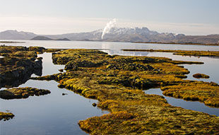 Our most popular day tours in Iceland