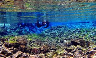 Snorkeling Silfra Day Tour