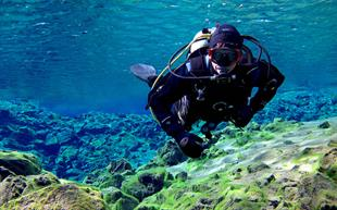 Silfra Diving Day Tour