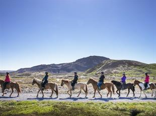 Nature Comfort Horse Riding Tour